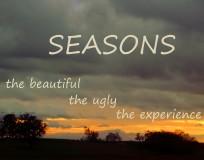 SeasonsWidgetBlog2_4269 copy