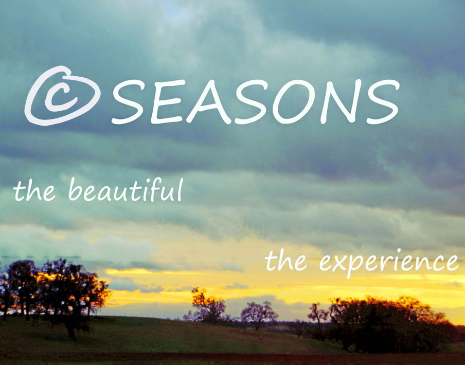 Seasons in Thought and life